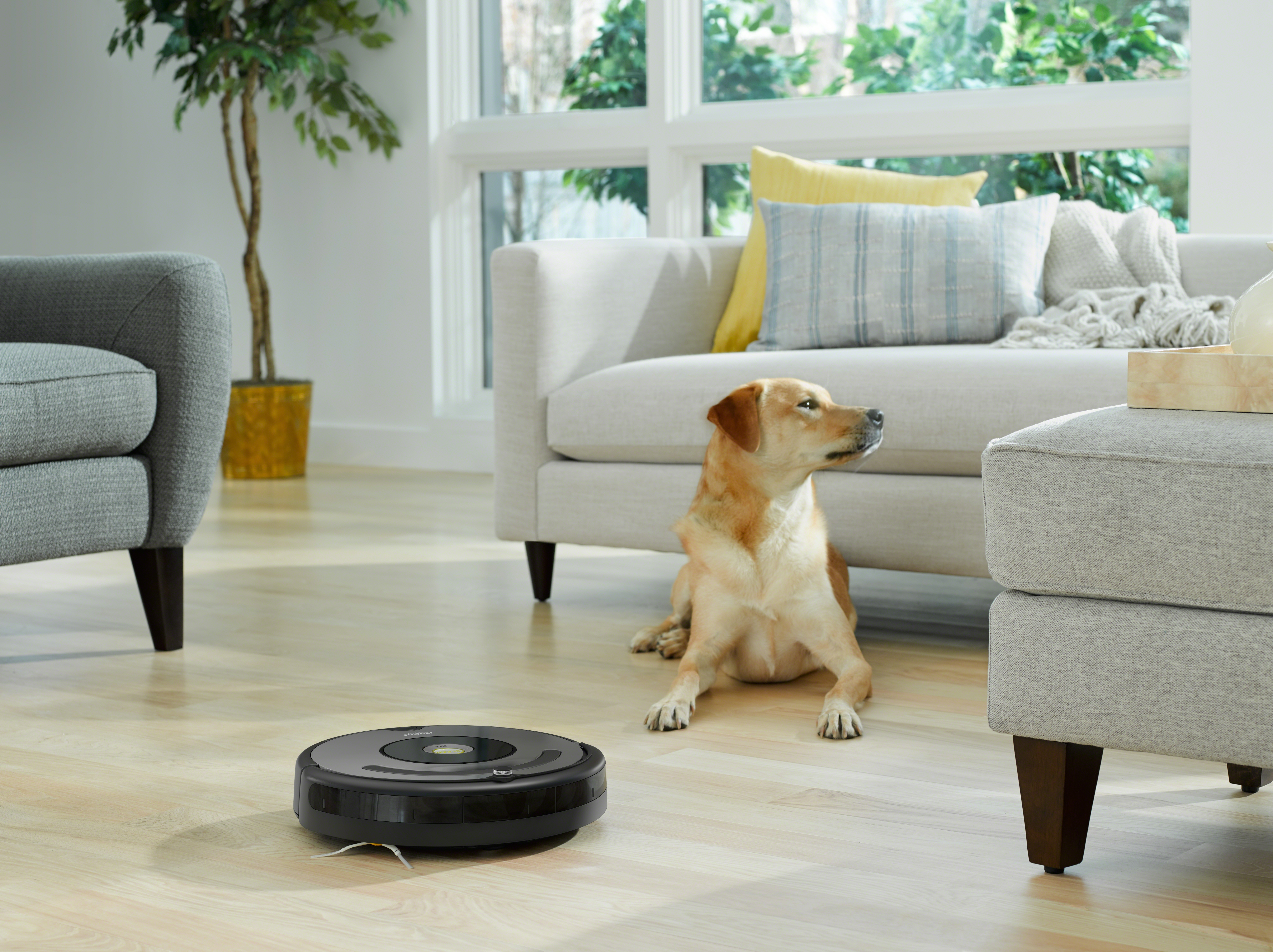 If tech savviness isnt your forte then the roomba 637 is the robotic vacuum for you its the standard setting bot that is perfect for a thorough